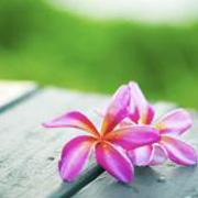 天然アロマ香房 月の花